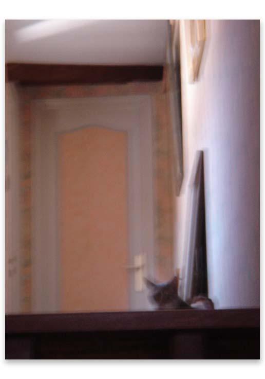 mumtaz_escalier